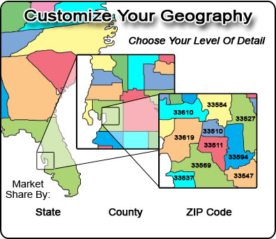 Customize Your Market Share Geography Level Of Detail